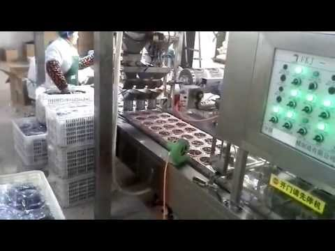 Emirates Dates/date palm vacuum blister packing machine/Date jam blister packing machine