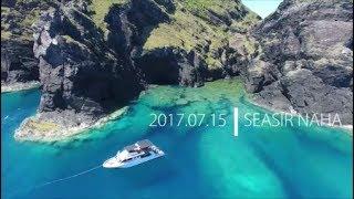 慶良間1日便シュノーケルツアーではウミガメ遭遇率が高いです!Marine H...