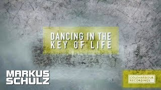 Markus Schulz - Dancing In The Key Of Life (Michael Gin Remix)