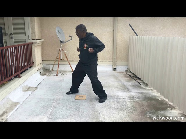 Wing Chun Full & Exchange Step