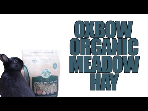 Oxbow Organic Meadow Hay Review