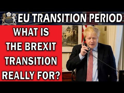 What the Brexit