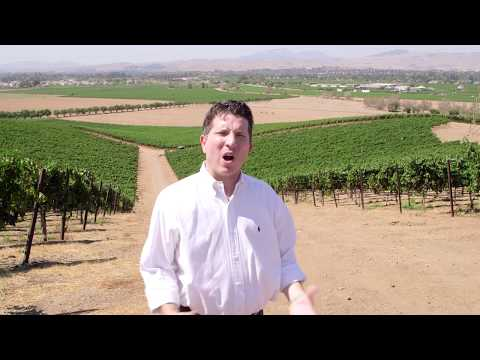 Discover California Wines: Livermore Lodi and Santa Cruz