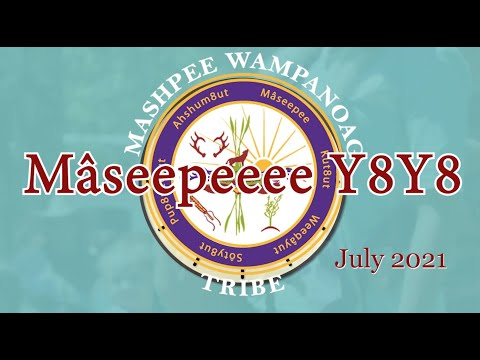 Mâseepeeee Y8Y8 July 2021