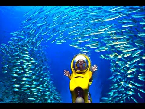 Underwater Sub Adventure in Bahamas
