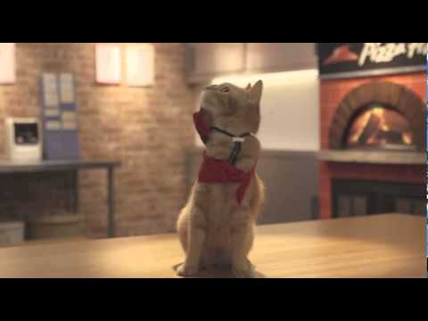Japanese Pizza Hut Commercials featuring Cat employees thumbnail