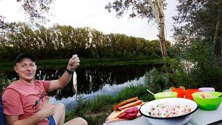 Рыбалка с НОЧЁВКОЙ на реке УРАЛ Готовим на ПРИРОДЕ По дороге к Ириклинскому водохранилищу