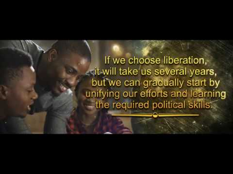 LIBERATING NIGERIA: A GUIDE TO WINNING ELECTIONS AND REVIVING OUR COUNTRY -DEBO ONIFADE, FEMI FALANA