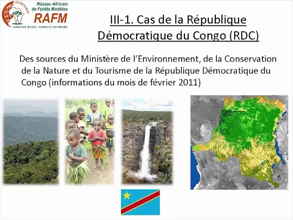 Gaétan Roch Moloto A. Kenguemba - Les mécanismes de REDD+ en Afrique centrale