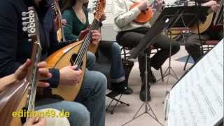 Somebody That I Used To Know Cover Excerpt Gotye Mandolin Orchestra Zupforchester