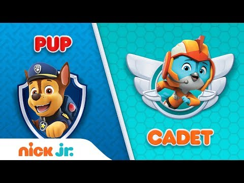 PAW Patrol & Top Wing Trivia Game   Pup or Cadet Interactive Video   Nick Jr.
