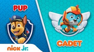 PAW Patrol &amp Top Wing Trivia Game Pup or Cadet Interactive Video Nick Jr.