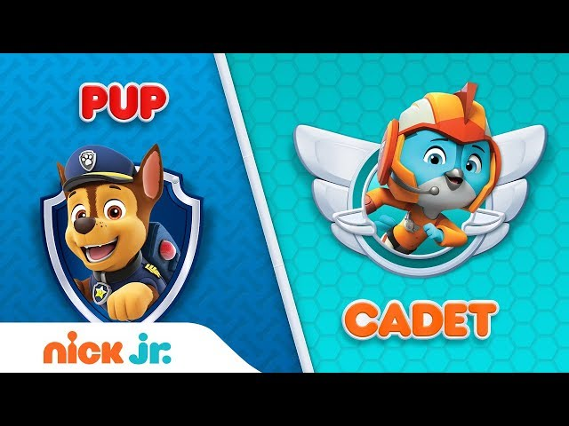 PAW Patrol & Top Wing Trivia Game | Pup or Cadet Interactive Video | Nick Jr.
