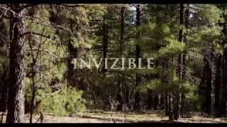 "Jean Pascal Boffo ""Invizible""  (CD teaser n°3)"