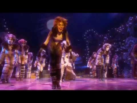 RYE REVIEWS: CATS BROADWAY REVIVAL