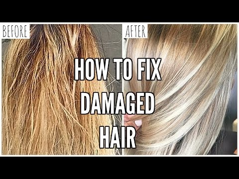 How To Fix EXTREMELY Damaged Hair At Home