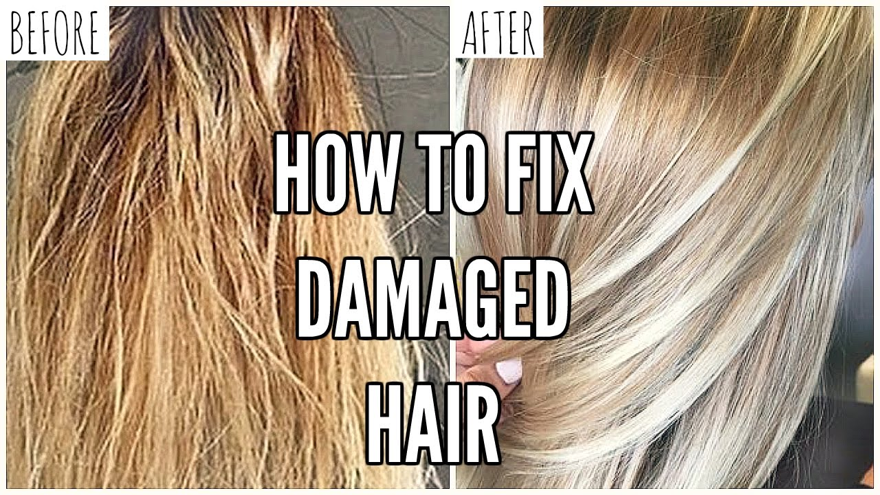 How To Fix EXTREMELY Damaged Hair At Home - YouTube