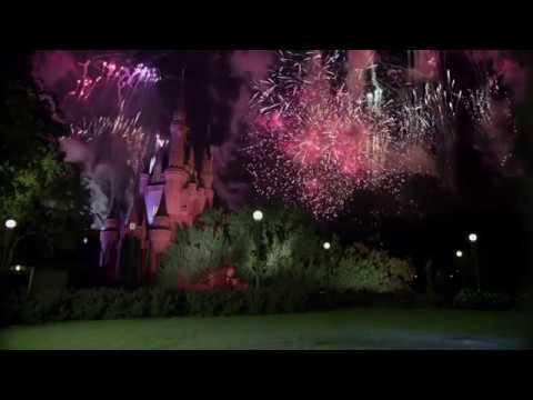 Mickey Mouse Brings Disney Magic to New York City.wmv