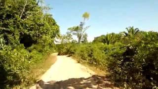 CAMINO AL AMBORO
