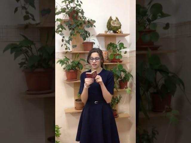 Изображение предпросмотра прочтения – ЛидияФедорова читает произведение «Бабушке» М.И.Цветаевой