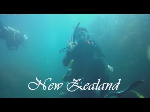 TRAVEL DIARY NEW ZEALAND || Charlie van der Veek