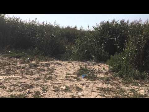 Мелитопольская обл строгановские грязи для больных псориазом