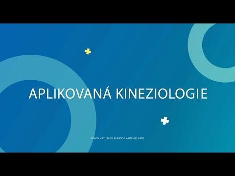 Klinický Přehled, L F  Vasilyeva Kurzy Aplikované Kineziologie V Praze 3