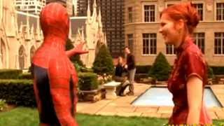 Spider man (like a somebody fuck you bitch) version