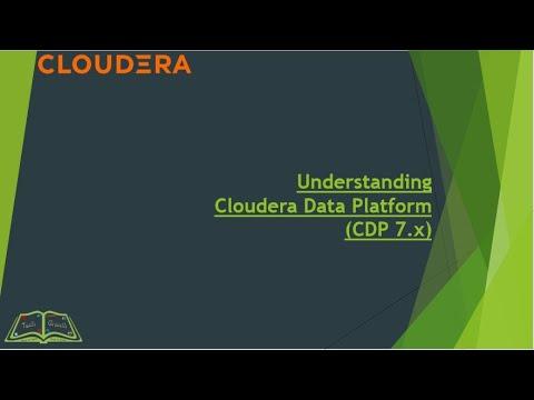Understanding CDP 7 X