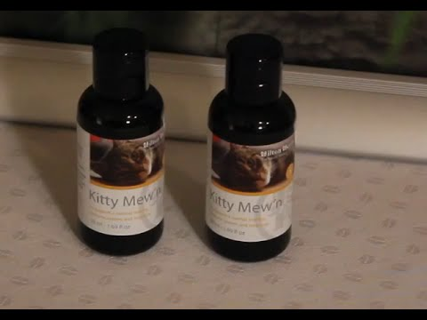 Kitty Mewn - Herbal Special Support Supplement for Cats - Product Description