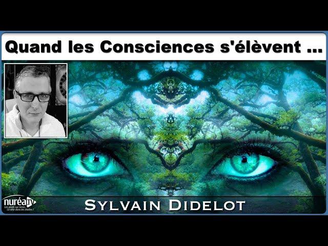 « Quand les Consciences s'élèvent » avec Sylvain Didelot - NURÉA TV