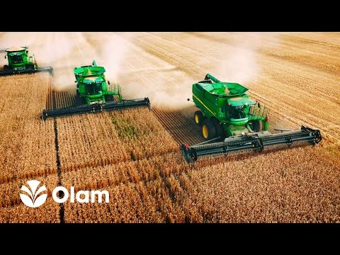 OLAM International Russia