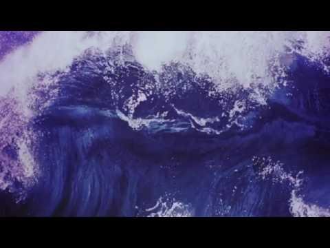 Champion - Fall Out Boy (AUDIO)