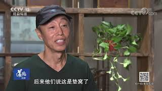 《道德观察(日播版)》 20190921 小燕子回家  CCTV社会与法