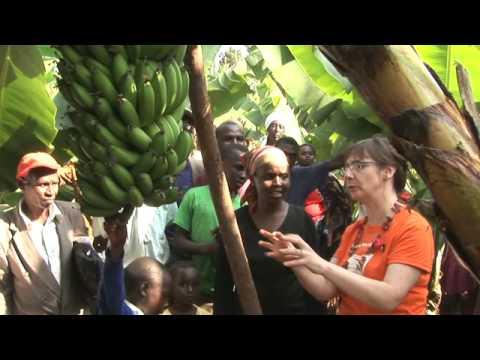 A taste of Kenya with Pauline McLynn