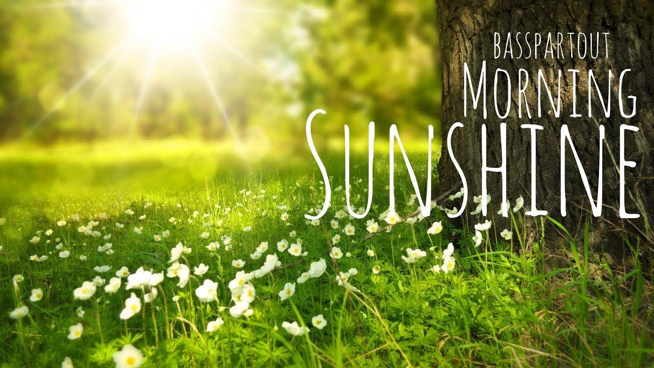 Good Morning Sunshine My Only Sunshine : Happy instrumental background music for video morning