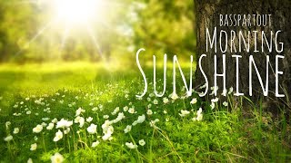 Happy Instrumental Background Music for Video - Morning Sunshine