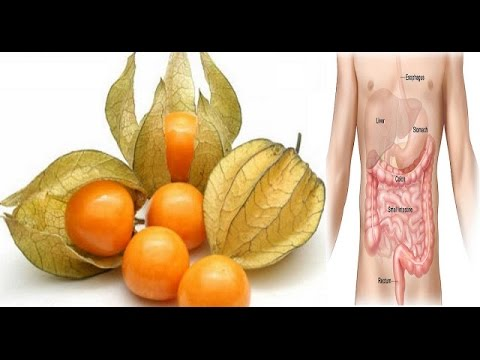 This Small Fruit is a Real Treasure Can Cure Prostate Cancer and Prevent Stomach and Colon Cancer!