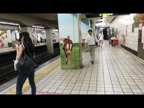 Strange metro station near Osaka zoo