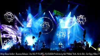 String Cheese Incident - Suwannee Hulaween - Live Oak, Fl  11- 2- 2013