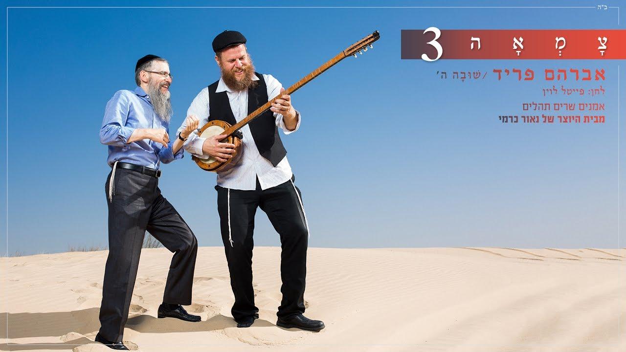 אברהם פריד - שובה ה' // מתוך פרויקט צמאה 3