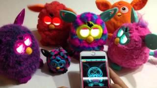 Furby, Furby boom, bébé Furby :  Furbling. Démo rapide, Furby et Siri