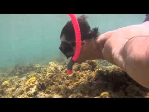 Anini Beach, Kauai, Snorkel with GoPro
