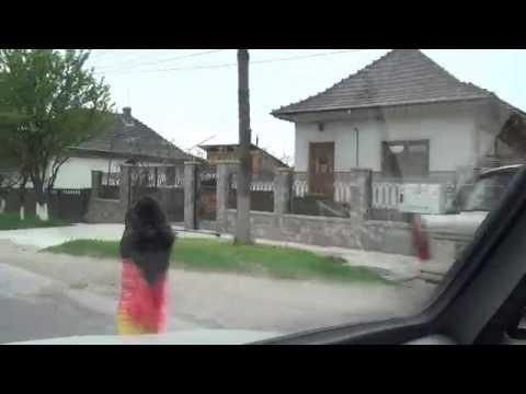 Dealu Mare Fieni Moţăieni 71 Große Walachei Rumänien Romania 19.4.2016