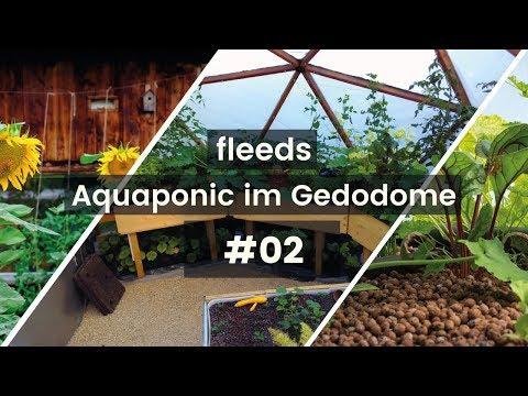 Fischtank im Dome angeschlossen / fleeds Aquaponik im Geodome #02
