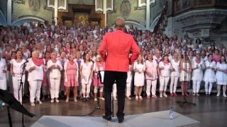 Swedish House Mafia Mash-up med Gabriel Forss och kören Du kan sjunga gospel