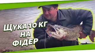 Рибалка на Дністрі без обмежень. Щука на 10 кг на фідер