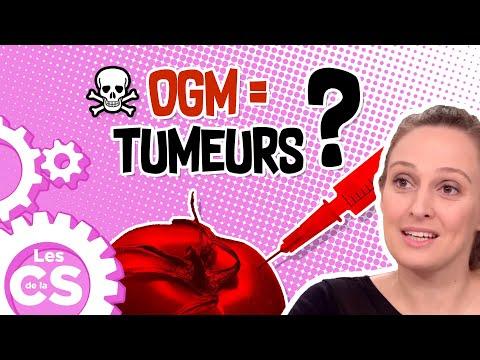Les OGM Provoquent Des TUMEURS ? Retour Sur L'étude Séralini - Les Chroniques De La Science