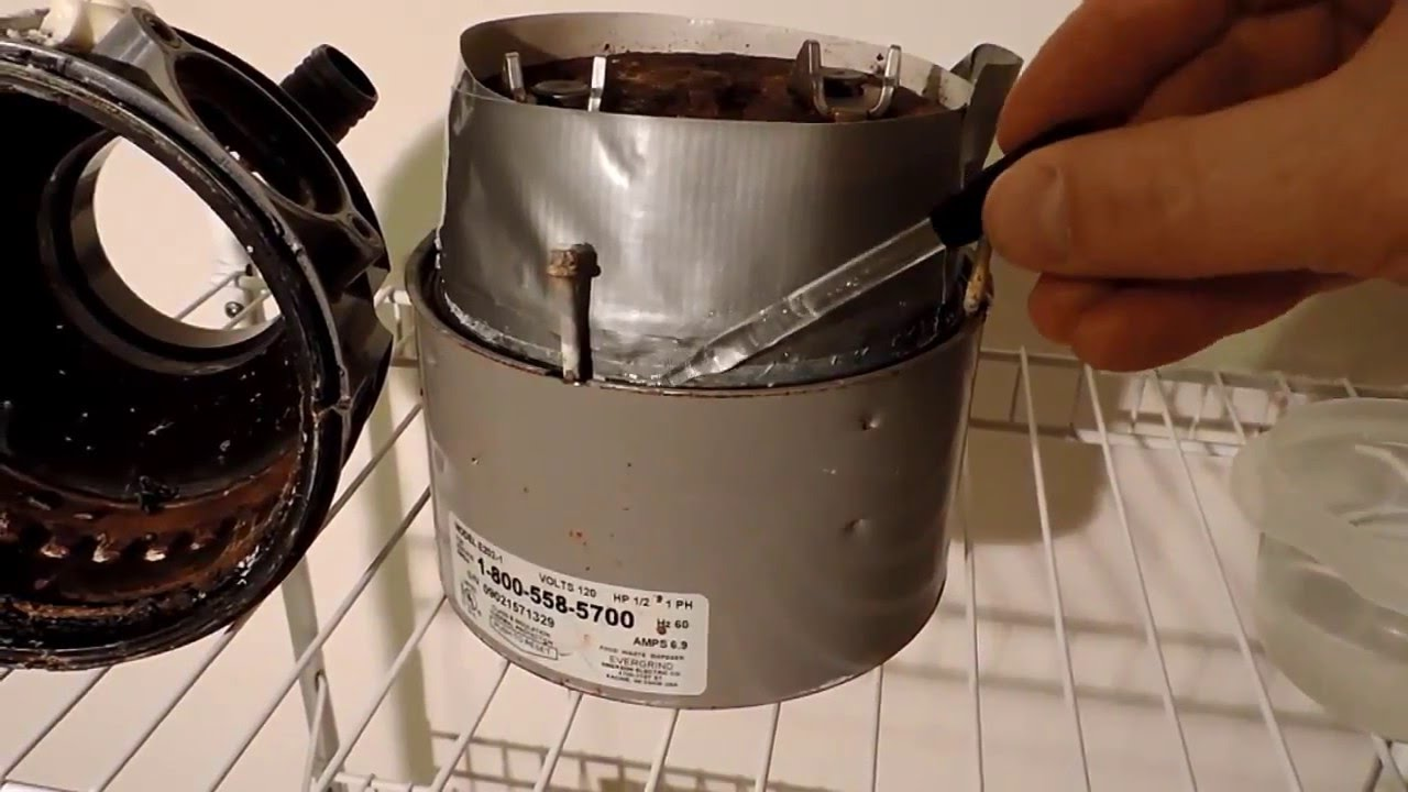 Garbage Disposal Leaking And Fix Youtube