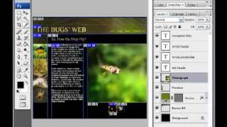 Уроки Photoshop CS4, Дизайн для Web.